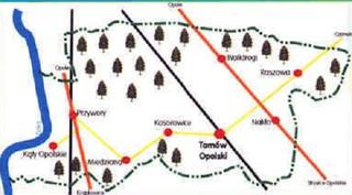 mapa Gminy Tarnów Opolski.jpeg